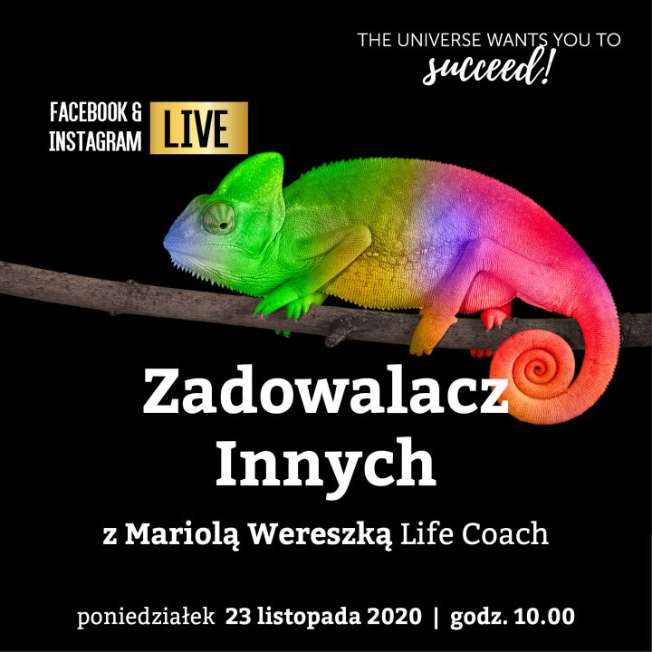 Read more about the article Zadowalacz Innych