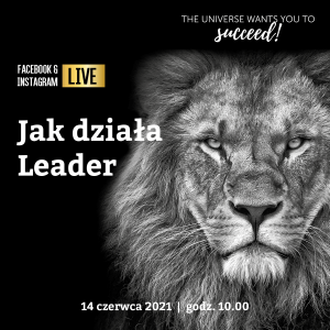 Read more about the article Jak działa Leader