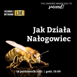 Read more about the article Kim jest Nałogowiec?